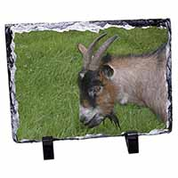 Cheeky Goat Photo Slate Photo Ornament Gift