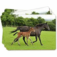Mare with Newborn Foal Picture Placemats in Gift Box