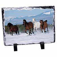 Running Horses in Snow Photo Slate Photo Ornament Gift