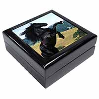 Rearing Black Stallion Keepsake/Jewel Box Birthday Gift Idea