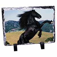 Rearing Black Stallion Photo Slate Christmas Gift Idea
