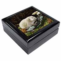 Albino Hedgehog Wildlife Keepsake/Jewellery Box Birthday Gift Idea