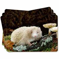 Albino Hedgehog Wildlife Picture Placemats in Gift Box
