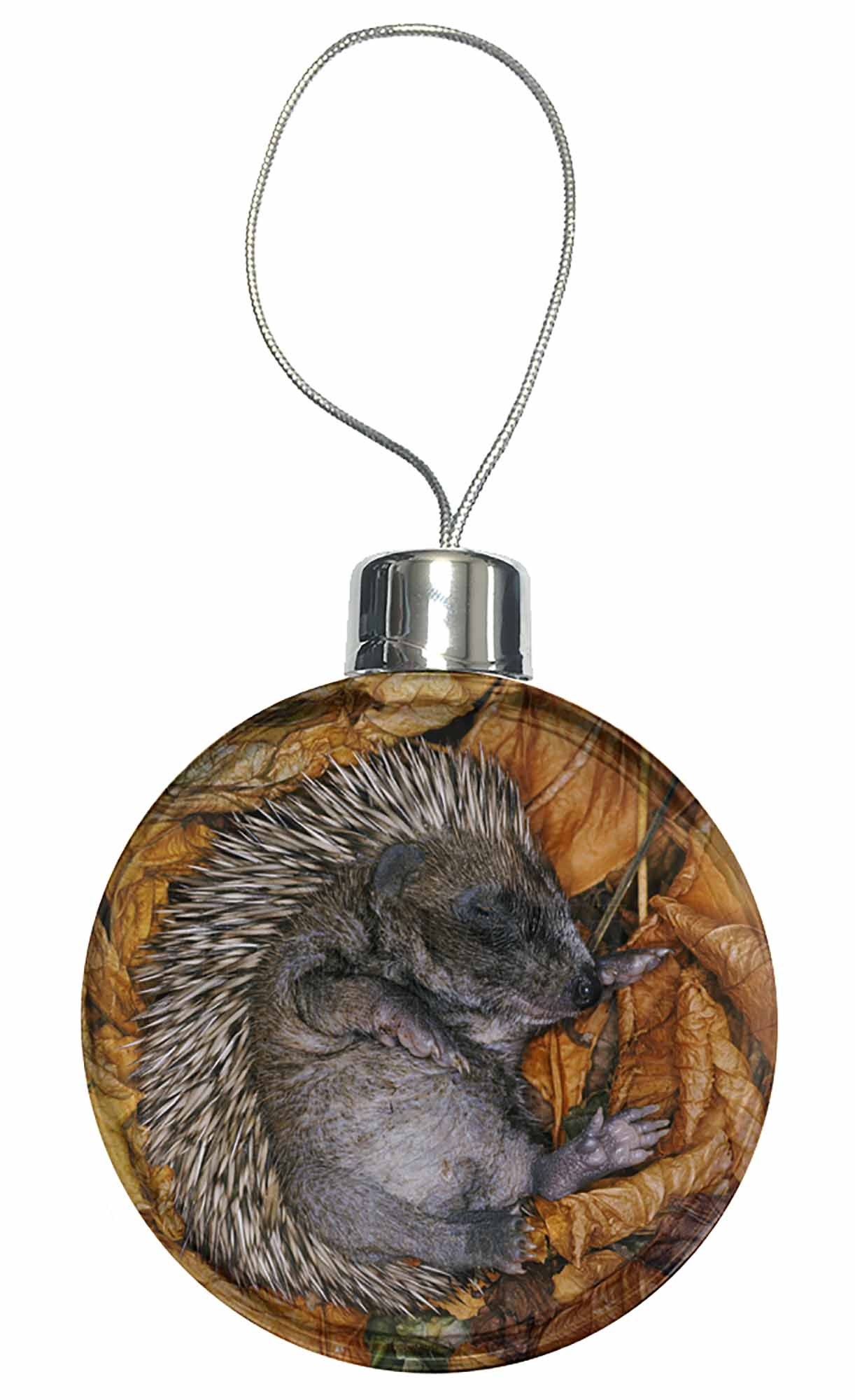 AHE-4CB Sleeping Baby Hedgehog Christmas Tree Bauble Decoration Gift