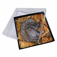 4x Sleeping Baby Hedgehog Picture Table Coasters Set in Gift Box