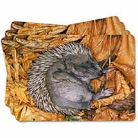 Sleeping Baby Hedgehog Picture Placemats in Gift Box