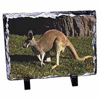 Kangaroo Photo Slate Christmas Gift Idea