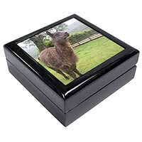 Llama Keepsake/Jewel Box Birthday Gift Idea