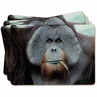 Handsome Orangutan Picture Placemats in Gift Box