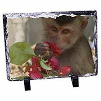Monkey with Flowers Photo Slate Christmas Gift Ornament