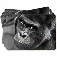 Handsome Silverback Gorilla Picture Placemats in Gift Box