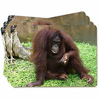 Orangutan Picture Placemats in Gift Box