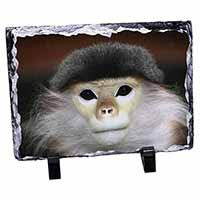 Cheeky Monkey Photo Slate Christmas Gift Ornament
