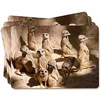 Meerkats Picture Placemats in Gift Box