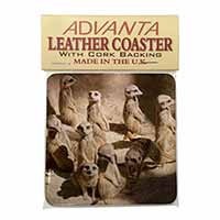 Meerkats Single Leather Photo Coaster Perfect Gift