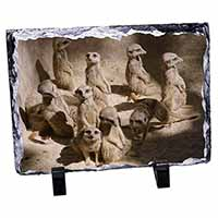 Meerkats Photo Slate Photo Ornament Gift