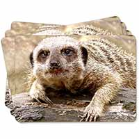 Cheeky Meerkat Picture Placemats in Gift Box