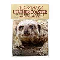 Cheeky Meerkat Single Leather Photo Coaster Perfect Gift
