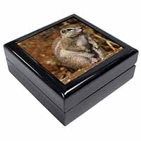 Chipmumks Keepsake/Jewellery Box Christmas Gift