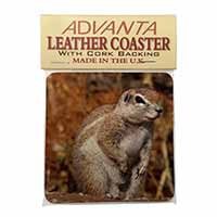 Chipmumks Single Leather Photo Coaster Animal Breed Gift