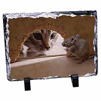 Cat and Mouse Photo Slate Christmas Gift Ornament