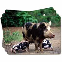 Mother and Piglets Picture Placemats in Gift Box