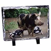 Mother and Piglets Photo Slate Christmas Gift Idea