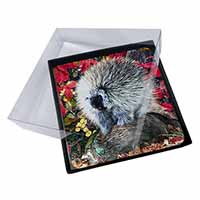 4x Porcupine Wildlife Print Picture Table Coasters Set in Gift Box