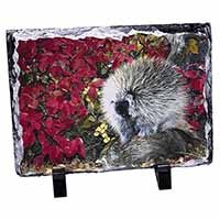 Porcupine Wildlife Print Photo Slate Photo Ornament Gift