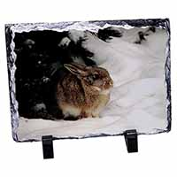 Rabbit in Snow Photo Slate Christmas Gift Idea