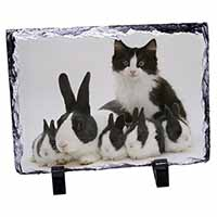 Belgian Dutch Rabbits and Kitten Photo Slate Christmas Gift Ornament