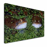"Pond Frogs Ex Large 30""x20"" Picture Wall Art"
