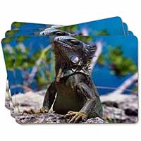 Lizard Picture Placemats in Gift Box