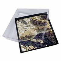 4x Rattle Snake Picture Table Coasters Set in Gift Box