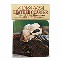 Boa Constrictor Snake Single Leather Photo Coaster Perfect Gift