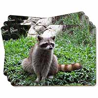 Racoon Lemur Picture Placemats in Gift Box