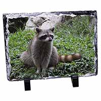 Racoon Lemur Photo Slate Christmas Gift Ornament