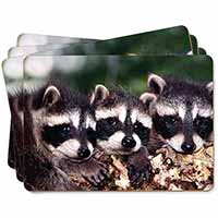 Cute Baby Racoons Picture Placemats in Gift Box