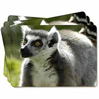 Ringtail Lemur Picture Placemats in Gift Box