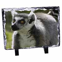 Ringtail Lemur Photo Slate Christmas Gift Idea