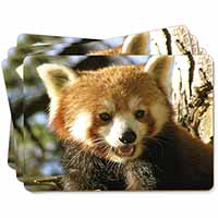 Red Panda Bear Picture Placemats in Gift Box