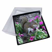 4x Squirrel by Flowers Picture Table Coasters Set in Gift Box