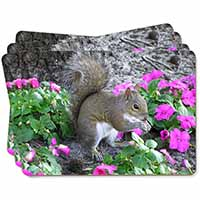 Squirrel by Flowers Picture Placemats in Gift Box