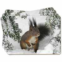 Forest Snow Squirrel Picture Placemats in Gift Box