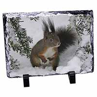 Forest Snow Squirrel Photo Slate Photo Ornament Gift