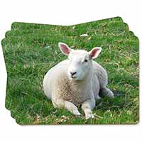 Lamb in Field Picture Placemats in Gift Box