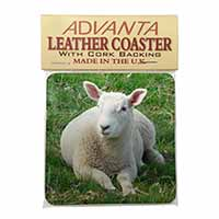 Lamb in Field Single Leather Photo Coaster Perfect Gift