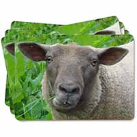 Cute Sheeps Face Picture Placemats in Gift Box