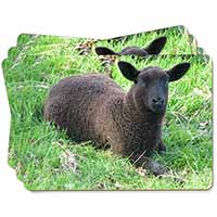 Black Lamb Picture Placemats in Gift Box
