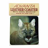 Stunning Big Cat Cougar Single Leather Photo Coaster Perfect Gift
